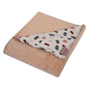 Trend Lab Paddington Bear Minky Knit Velvet Baby Blanket, Brown