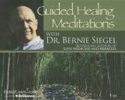 Guided Healing Meditations [Audio]