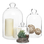 Set of 3 Decorative Clear Glass Apothecary Cloche Bell Jars / Plant Terrarium / Centrepiece Dome Display