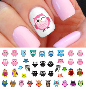 Owl Assortment Nail Art Waterslide Decals Set #1 - Salon Quality!
