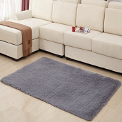 MBIGM Home Decorator Modern Shag Area Rugs Super Soft Solid Living Room Carpet Bedroom Washable Rug and Carpets, 0.6m X 1.2m [80 * 120cm] Grey