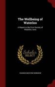 The Wellbeing of Waterloo