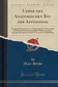 Ueber Den Anatomischen Bau Der Apstasiinae [GER]