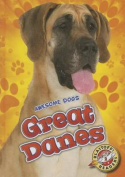 Great Danes (Awesome Dogs)