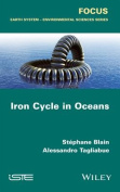 Iron Cycle in Oceans