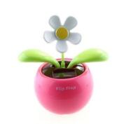 Kingzer Flip Flap Solar Powered Flower Flowerpot Swing Dancing Toy Gift