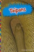 Taipans (Poisonous Animals)