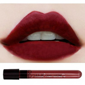 Waterproof lipgloss velvet matte Long Wear lipstick