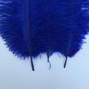 Generic Royal Blue 10-12inch 25-30cm Ostrich Feather Home Decoration DIY Craft Pack of 10