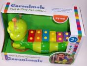 Garanimals Pull & Play Xylophone by Garanimals