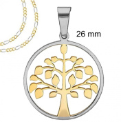 "Two tone Gold and Silver Round Tree of Life pendant Necklace with Frame - 26 MM = 1 Inch Stainless Steel + 18"" or 20"" Two Tone Chain Figaro Necklace"