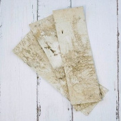 Natural Birch Bark Strips, 50cm x 18cm Rectangle Wood Sheets, Set of 6