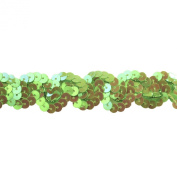 Sequin Trim 2.5cm Wide Polyester Non Stretch Sequin Trim Rolls for Arts and Crafts, 10-Yard, Lime