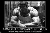 Arnold Schwarzenegge Body Building Nice Silk Fabric Cloth Wall Poster Print