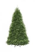 3.7m Northern Dunhill Fir Full Artificial Christmas Tree - Unlit