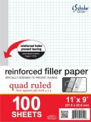 iScholar Reinforced Quad Filler Paper, 100 Sheets