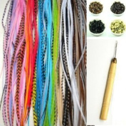 NEW 18cm - 28cm Feather Hair Extension Kit 10 Long Multi colour Genuine Single Feathers + 10 Micro Beads & hook Tool