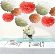 Saitec ® Pack of 18PCS Mixed Coral Peach Ivory Party Tissue Pom Poms Paper Flower Pompoms Wedding Birthday Party Nursery Decoration