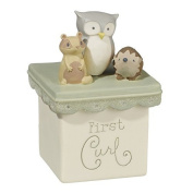 First Tooth & First Curl Boxes Set by Grasslands Road