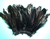 "Rooster ""Coque"" Black Tail Feathers,7.6cm - 15cm Length, Per Strung Foot"