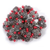 Miniature Christmas Pinecones with Frost 3 Item Order 2423-17