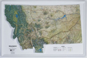 American Education Raised Relief Map