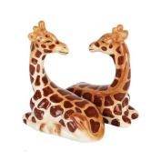 1 X Salt & Pepper Shakers - Giraffe Magnetic Salt And Pepper Shakers