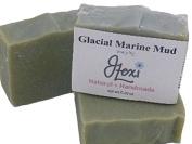J. Lexi Glacial Marine Mud