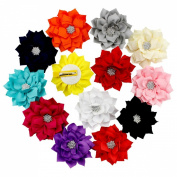 Lotus Flower Ribbon Hair Clips for Baby Girls 13pcs