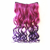 ACELIST® New Two Tone One Piece Long Synthetic Thick Hair Extensions Curl/Curly/Wavy Clip-on Hairpieces 13 Colours