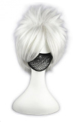 LOUISE MAELYS Short 32cm Anime Character Cosplay Full Wigs Party Costume Sliver