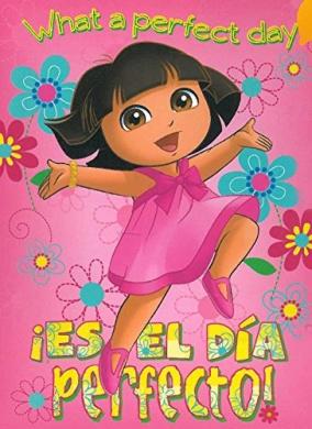 Dora El Dia Perfecto 40x50 Mink Style Blanket in Gift Box