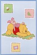 Disney Baby Winnie the Pooh Bedtime Stories Luxury Plush Throw Blanket