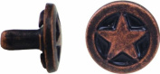 Springfield Leather Company 1cm Antique Copper and Black Star Concho- Rivetback