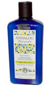 Andalou Naturals Age Defying Treatment Conditioner Thinning Hair Treatment with Argan Stem Cells, 340ml