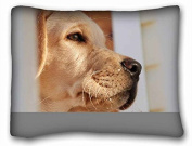 Custom Characteristic Animal Standard Size Pillowcase for Hair & Facial Beauty Size 50cm x 70cm suitable for Twin-bed