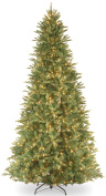 National Tree 'Feel-Real' Tiffany Fir Slim Hinged Tree with 1200 Clear Lights, 3.7m
