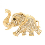 Cyllene fantaisie Crystal Brooch Gold
