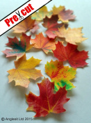 LARGE MAPLE LEAVES AUTUMN FALL EDIBLE RICE / WAFER PAPER CUP CAKE TOPPERS WEDDING PARTY BIRTHDAY DECORATION