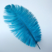 12-14inch 30-35cm Turquoise Natural Ostrich Feather Wedding Party Decoration Pack of 10