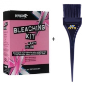 Crazy Colour's Bleach Kit plus ® Q7S Tint Brush TM