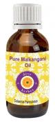Deve Herbes Pure Malkangani Oil 30Ml