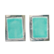 2 Pieces Gel Plasters - Do Not Require Refrigeration