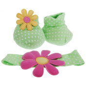 Baby Girls Butterfly/Flower Booties And Headband Set