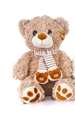 Brand New Winter Christmas Bear Beige with Scarf 30cm Soft Toy