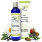 Wild Blueberry & Chaga Cleanser, Organic Wild Blueberry and Wild Harvested Maine Chaga Mushroom for Highest in Antioxidants