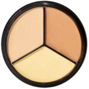Concealer Palette in Perfectly Coordinated Creamy Colours for Complexion Perfection
