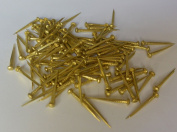 Solid Brass Nails Tacks for Shoes Boots Leather Heels Soles Repairs Replace 60ml