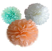 Saitec ® 12 Mixed White Mint Green Peach Party Tissue Pompoms Paper Flower Pom Poms Wedding Anniversary Party Christmas Decoration