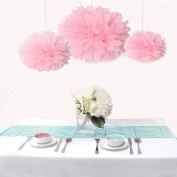Saitec ® 12PCS Mixed Sizes Pink Tissue Paper Flower Pom Poms Pompoms Wedding Birthday Party Baby Girl Room Decoration